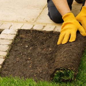 turf-lawn-gardening-supplies-north-west